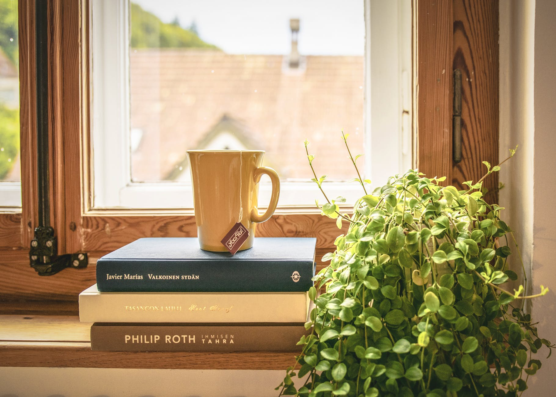 book stack books contemporary cup